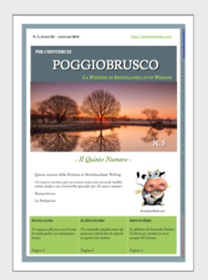 La Webzine di Briciolanellatte Weblog